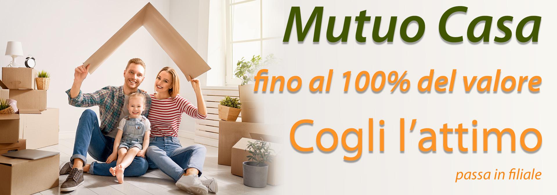 Mutuo Consap 100